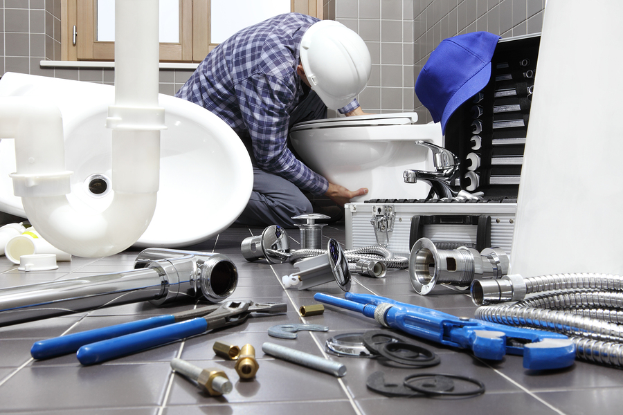 Plumbing & Drainage Systems